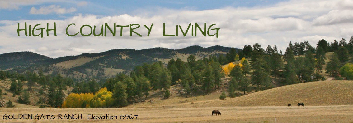 HIGH COUNTRY LIVING